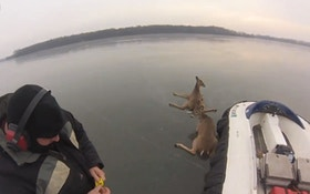 VIDEO: Hovercraft rescues stranded deer on Minnesota lake