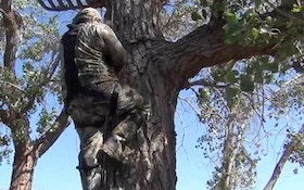 VIDEO: Treestand safety goes a long way towards a great hunt