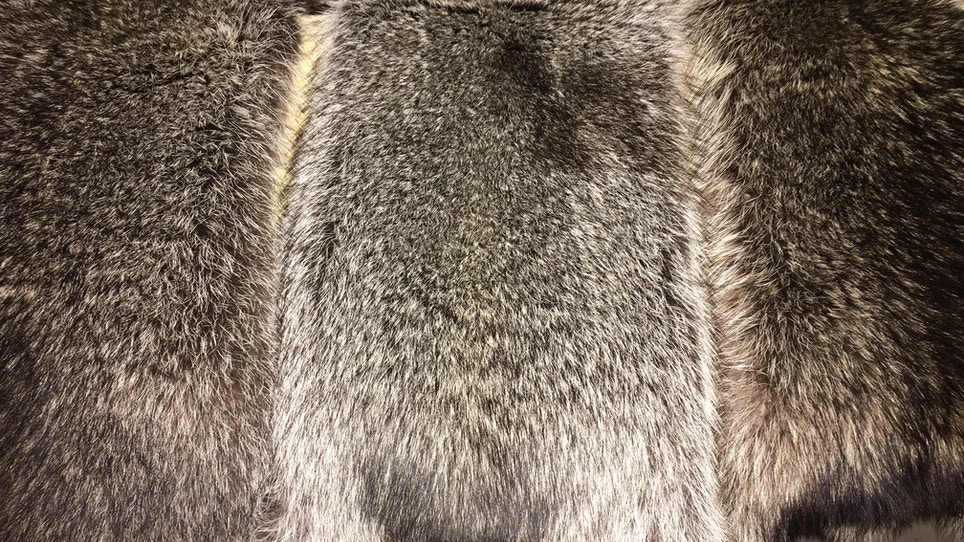How To Professionally Tan A Pelt