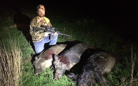 Shoot More Hogs With Thermal And Night Vision