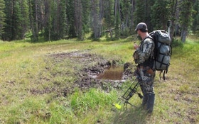 Learn To Alter Your Bowhunt To Match The Conditions