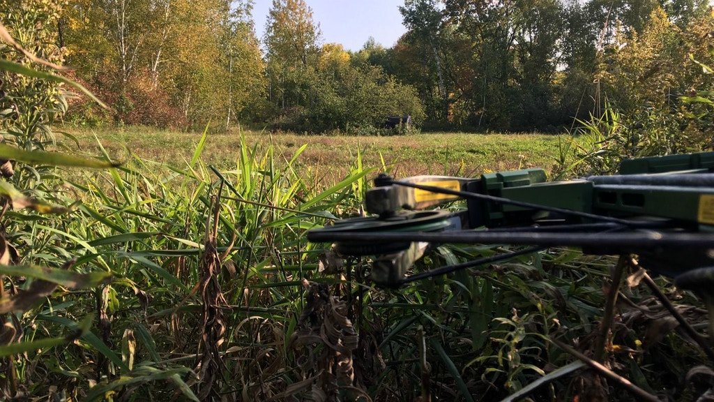 Crossbow Hunters: Why Ground Ambushes Are So Deadly