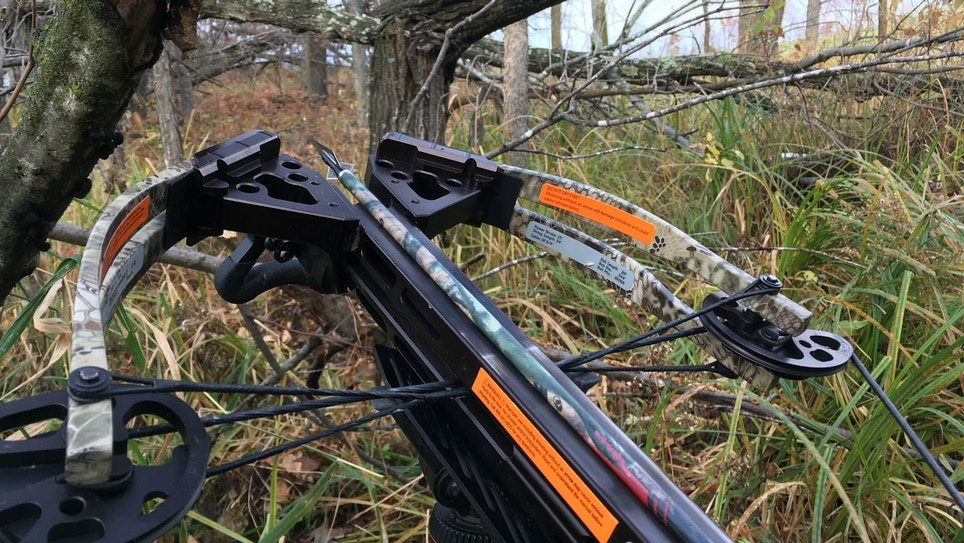 Crossbow Tip: How to Wait on a Whitetail