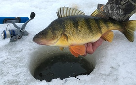 Ice Fishing 101: Four Must-Have Gear Items to Get Started