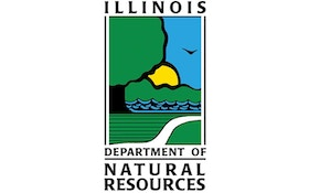 Illinois deer harvest down sharply from last year