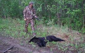 Alberta Bear Hunting Gear Part I