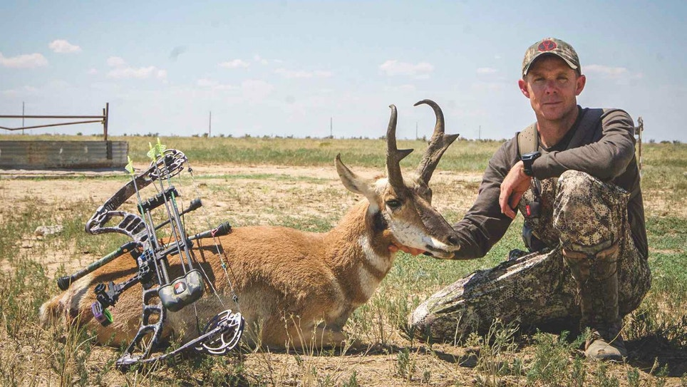 4 Tips for Hot-Weather Pronghorns