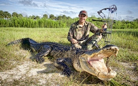 Nailing A Giant South Florida Gator With A Bow