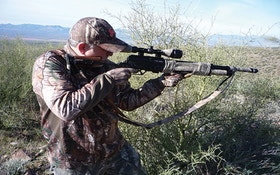 Hunting Javelina With Airguns