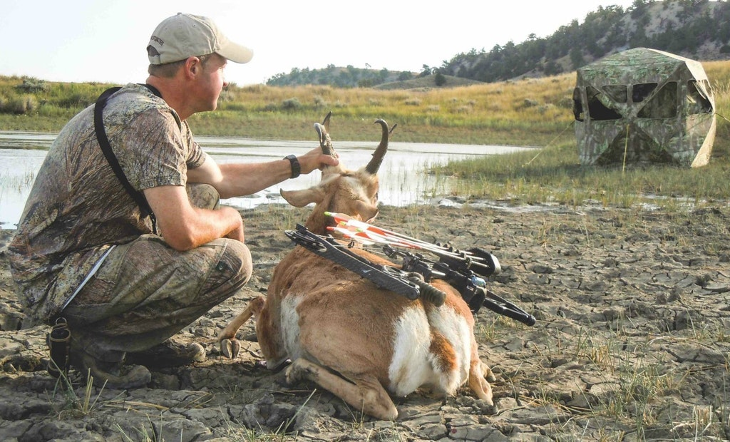Avoid These Pitfalls While Bowhunting Prairie Pronghorn