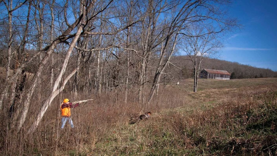 Industry-Funded Research: The More Hunters, the Better