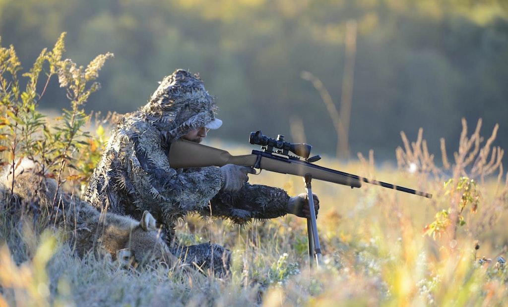 Hunting Post Big-Game Season Predators