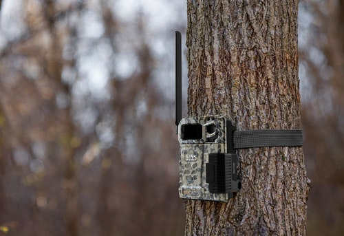 The SpyPoint Link-Micro-LTE cellular trail cam is micro: 3.1 inches wide x 4.4 inches tall (not including antenna) x 2.2 inches deep. It's powered by eight AA alkaline or lithium batteries (not included).