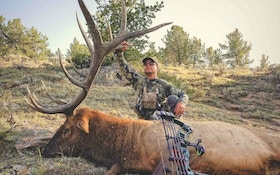 Life Lessons — And the Story Behind a Goliath Elk