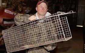 Predator Hunting: Spring Nuisance Control