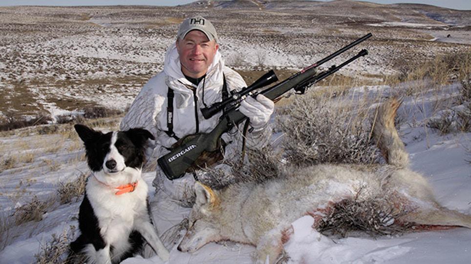 Curiosity Often Kills The Coyote