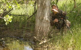 Summer Coyote Hunting Advice