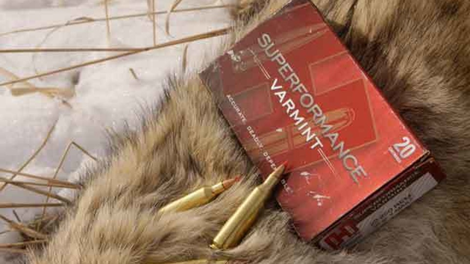 Fur Price Outlook Not Good News For Trappers