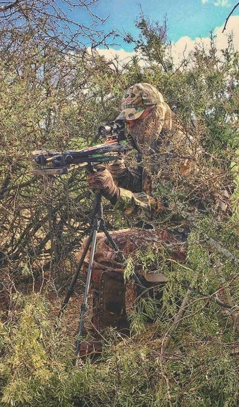 A sturdy tripod helps hold a crossbow ready during long sits overlooking waterholes.