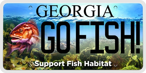 Georgia's marine habitat license plate costs $25 in addition to regular tag fees. During the first year of having the plate, $19 goes to the marine habitat enhancement fund. In the second year and every year after, $20 goes to the fund. The money is used to enhance habitats used my a variety of marine species.