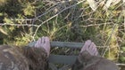 Self-Filmed Video: Michigan Public Land Whitetail