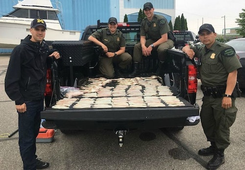 Left to right: Michigan Conservation Officers David Schaumburger, Danielle Zubek, Adam Beuthin and Keven Luther show walleye fillets and carcasses confiscated from two brothers who were poaching on the Detroit River in May 2018. Image courtesy of Michigan DNR.