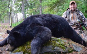 Black Bears: How to Arrow a Spring Giant