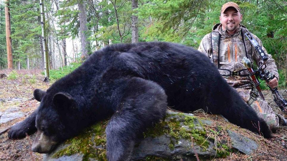 Black Bears: How to Arrow a Spring Giant