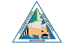 Missouri Pushes For Tougher Deer Rules To Battle CWD
