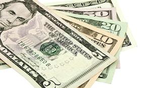 Foundation Gives West Virgina $50K Grant For Elk Restoration