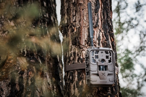The new Delta cell cam from Moultrie Mobile measures 5 inches wide x 6.25 inches tall (not including antenna) x 3 inches deep. It's powered by 12 AA alkaline or lithium batteries (not included).