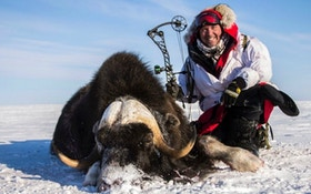Pope and Young Club Raffle: $19K Muskox Hunt and More!