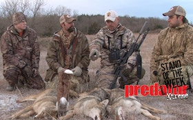 VIDEO: Coyote triple in north central Kansas