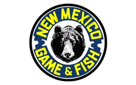 New Mexico Considers Easing Hunt Limits On Bears, Cougars