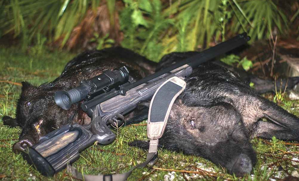 Nighttime Hunting Tips for Wild Hogs