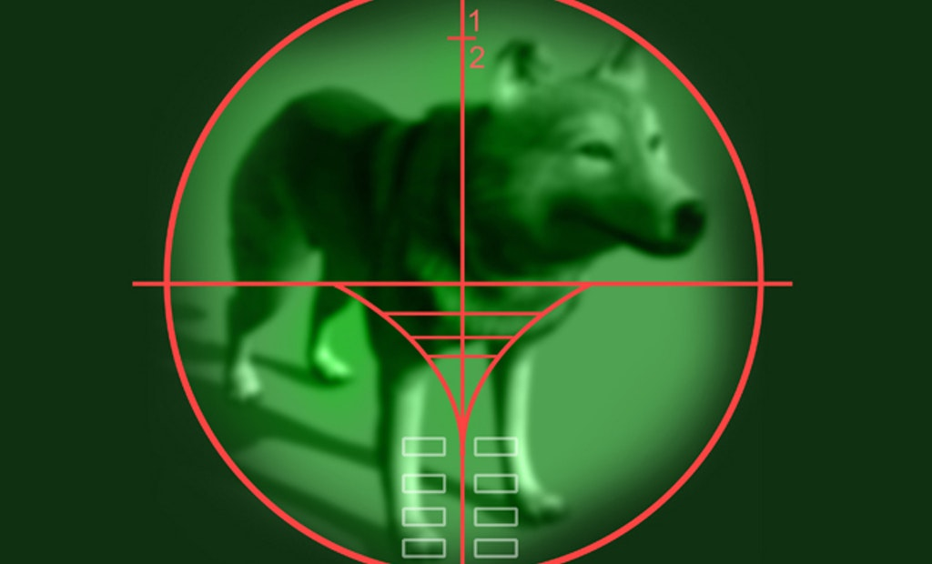 Pennsylvania Approves Night Vision Optics for Furbearer Hunting
