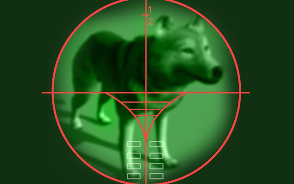 Pennsylvania Considers Night Vision Optics for Furbearer Hunting