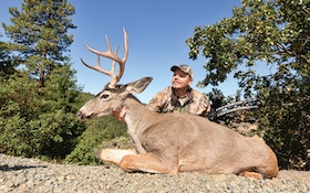 The Columbian Blacktail: A Bowhunter's Bucket List