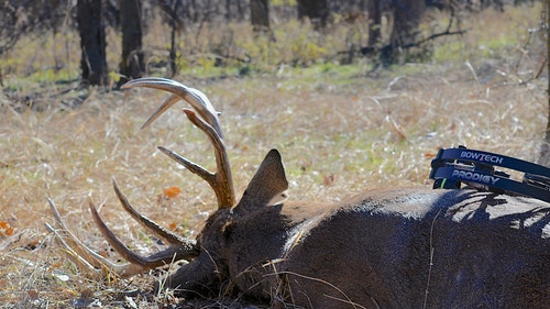 Persistent calling led to the eventual harvest of this 166-inch gross-scoring buck. The whitetail perished just 40 yards from the hunter's treestand.