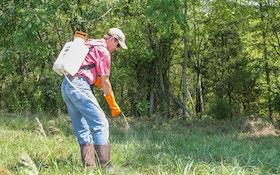 Food Plots: Herbicides 101