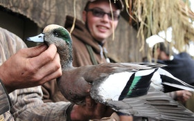 Survey: Last Year's Duck Season Graded B-