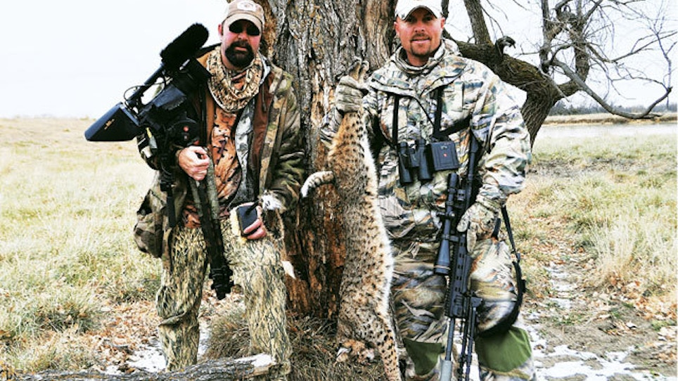 Q&A: Calling Bobcats With The Verminator