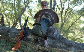 Why You Should Hunt Turkeys With An Airgun