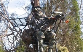 Using crossbows in a treestand