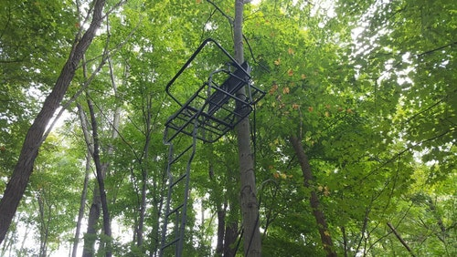 The author likes the wide seat and platform of a double ladder stand for hunting solo. No matter which direction he needs to shoot, with gun or bow, he can quietly move to a comfortable position.