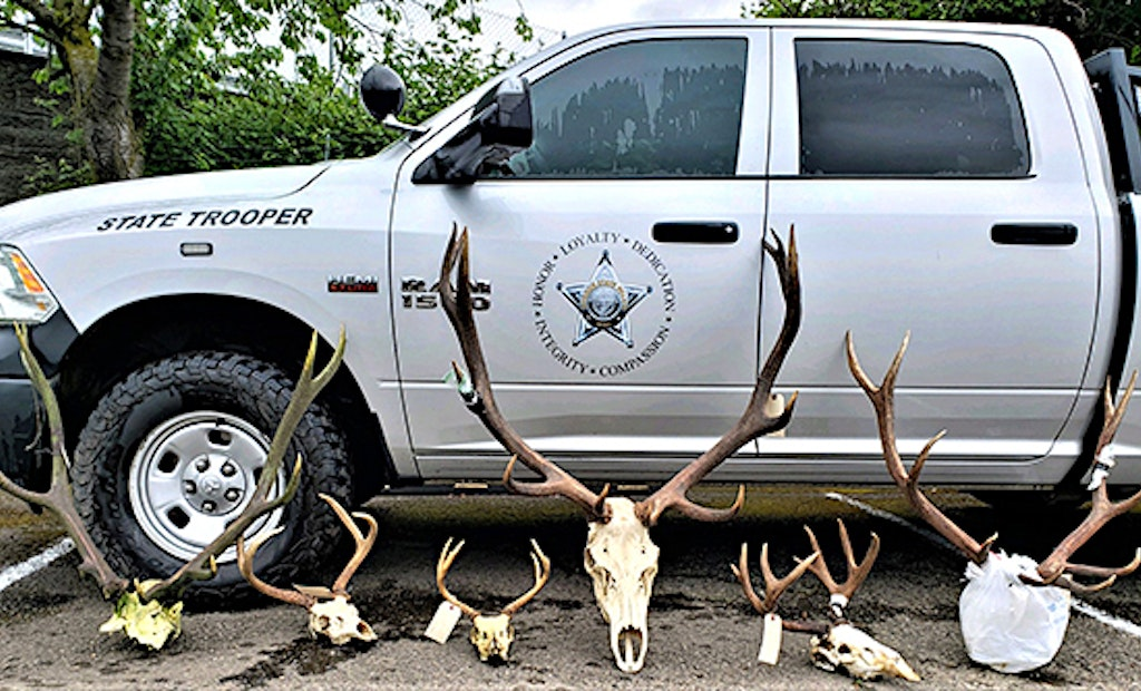 Game Warden Chronicles: Possible $162,000 in Poaching Fines, Restitution