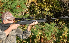 Airguns Are A Great Choice For Small Game