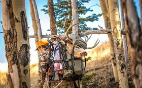5 Must-Have Field Dressing Tools for Your Hunting Pack