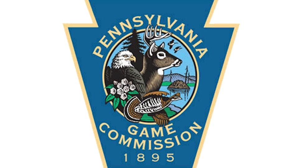 Pennsylvania finds latest case of deer with deadly disease