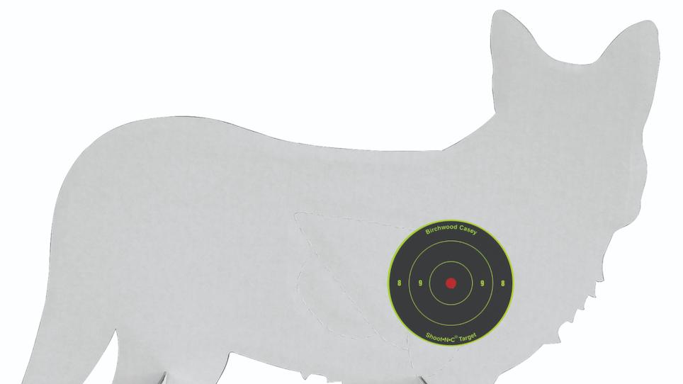Pattern Your Shotgun to Put Down More Predators